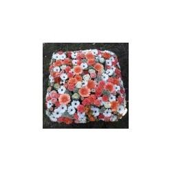 Cuscino quadrato a fiori -...