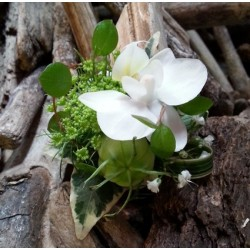 Flower boutonniere - Green...